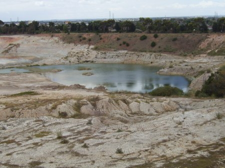 An example of a disease refuge for Growlers: a big, warm and relatively saline quarry wetland