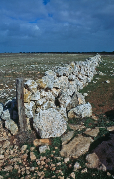 Limestone as far as the eye can see, Eyre Peninsula, South Australia